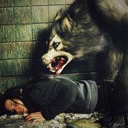 Gran lobo