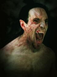 Vampiro herido