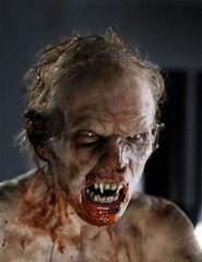 Vampiro transformación