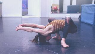 Soy flexible