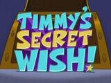 El Deseo Secreto de Timmy