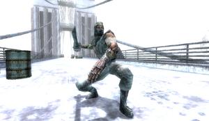 Dark Ninja in Snowy Bridge