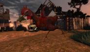 Hen in Animal Farm