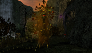 Red Walking Tree in Haunted Valley
