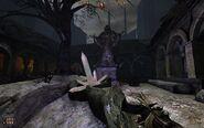 Chapter 10 Level 2 - Forbidden Valley 7