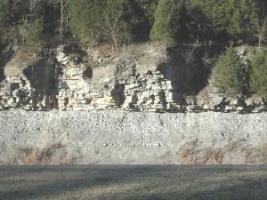 Limestoneshale7342
