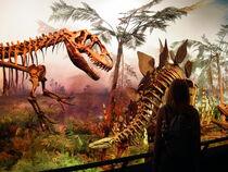 ROM dinosaurs