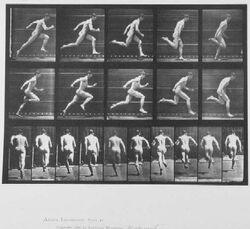 Muybridge runner