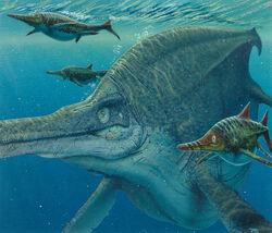Ichthyosaurs final