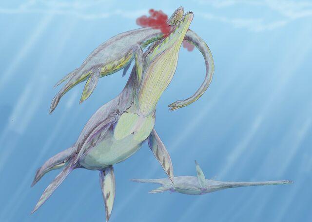 File:Kronosaurus hunt1DB.jpg