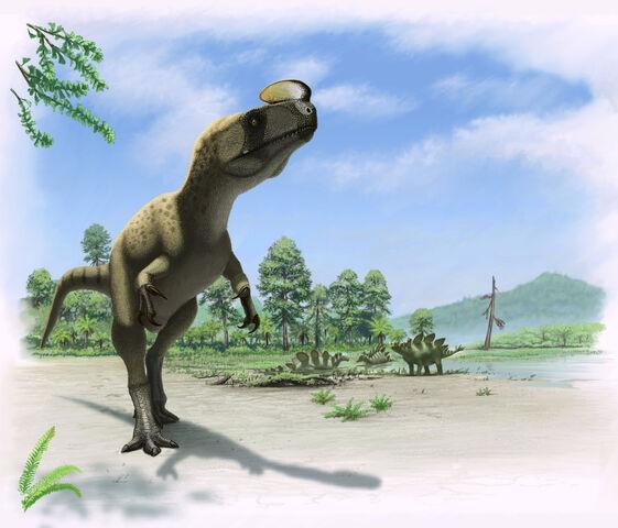 File:Kileskus aristotocus by Olorotitan.jpg