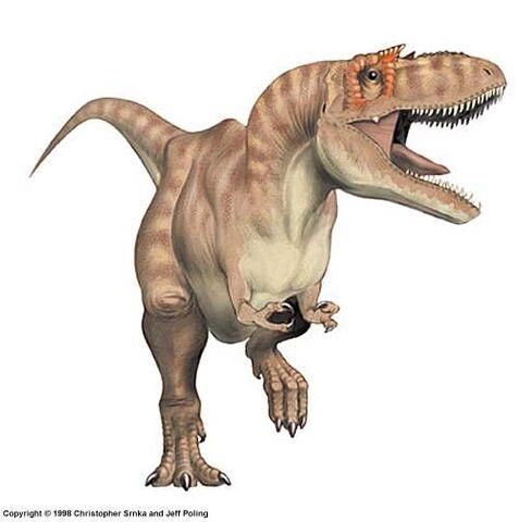 File:Albertosaurus2.jpg
