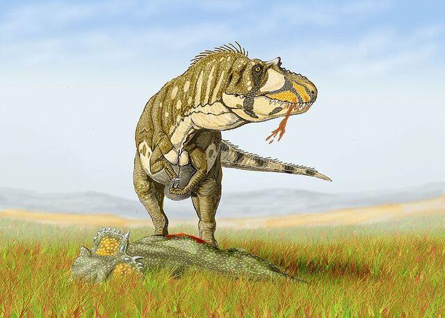 File:800px-Daspletosaurus torDB.jpg