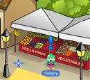 Tammy Tomato