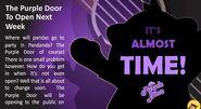 Pandanda The Purple Door
