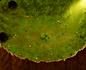 Minimap Gate of Poppuri Dungeon
