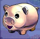 B pig