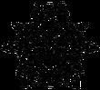 Wellspring Steeple Symbol
