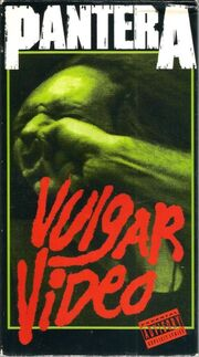 VulgarVid