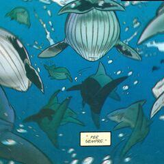 Le balene accolgono Davy e i suoi fratelli