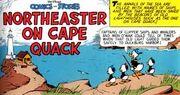 Faro di capo quack