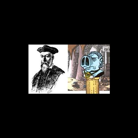 Confronto tra il vero Nostradamus e quello disegnato dall'autore.