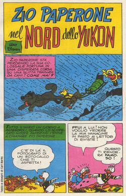 Nord dello Yukon