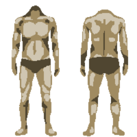 Body 3