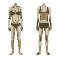 Body 11