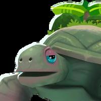 Tortoise portrait