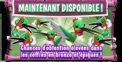 Pb promo bronze epic hummingbird eventboard fr