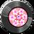 Record Hula