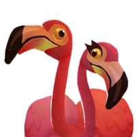 Flamingos Portrait