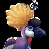 Portrait Crowned Crane