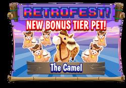 Camel Promo