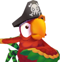 Portrait Pirate Parrot