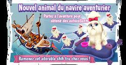Event Prissy Pooch fr