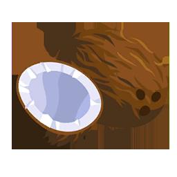 Noix de coco wikia la baie du paradis fandom powered - Dessin noix de coco ...