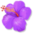 BeeHive event flower purple