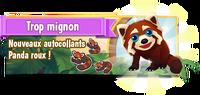 Promo red panda fr