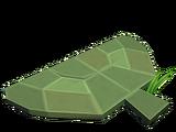 Tige d'eucalyptus
