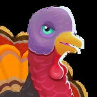 Portrait turkey