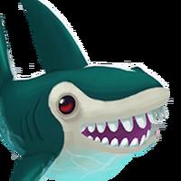 Portait shark