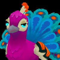 Portrait peacock