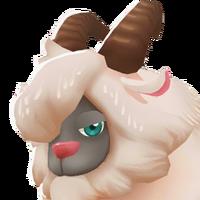 Portrait Fainting Goat