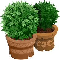 Gazebo event potted plants