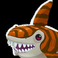 Portrait Tiger Shark