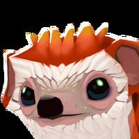 Portrait hedgehog orange