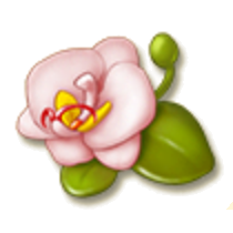 Exotic-flower