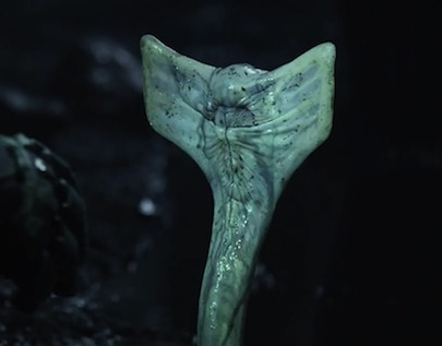 File:Prometheus-alien-snake.jpg